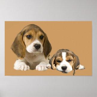 Beagle Buddies Print