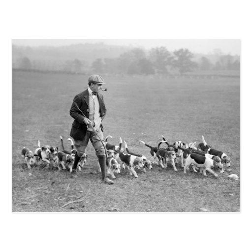 Beagle Club, 1914 Postcards