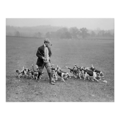 Beagle Club, 1914 Print