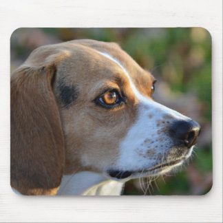 Beagle Determination Mouse Mat