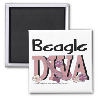 Beagle DIVA Magnets