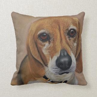 Beagle Dog artwork pet portrait Cushion