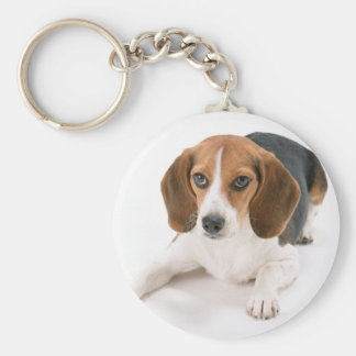 Beagle Dog Keychain