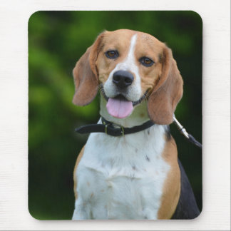 Beagle dog lovers beautiful photo mousepad