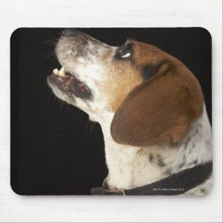 Beagle dog with black collar profile mouse pad