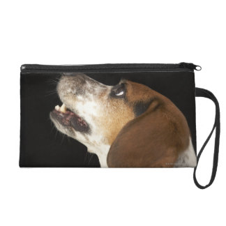 Beagle dog with black collar profile wristlet