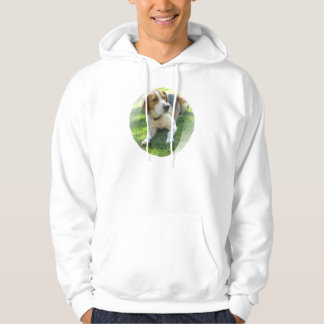 Beagle Hound Dog Men's Hooded Sweatshirt