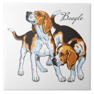 beagle hound large square tile