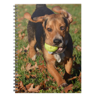 Beagle Hound Playing With Tennis Ball Notebook