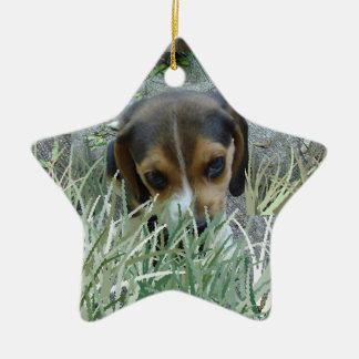 Beagle in the grass ceramic star decoration