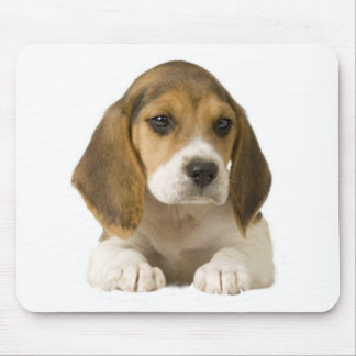 Beagle Mousepad