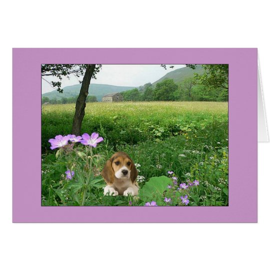 Beagle My Heart Is Yours Card