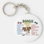 Beagle Property Laws 4