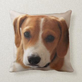 Beagle Puppy 2 Cushion