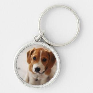 Beagle Puppy 2 Key Ring