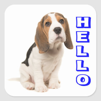 Beagle Puppy Dog Blue Hello, Thinking of You Square Sticker