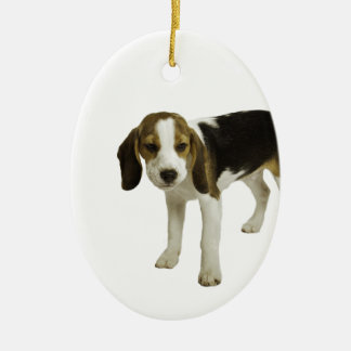 Beagle Puppy Dog Ceramic Oval Decoration