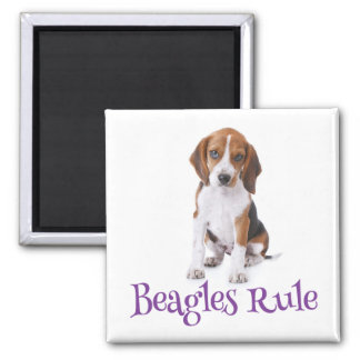 Beagle Puppy Dog Fridge Magnet