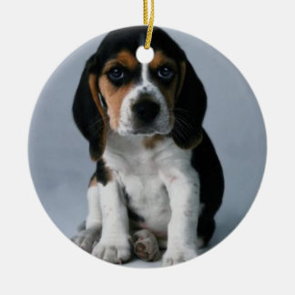 Beagle Puppy Dog Photo Christmas Ornament