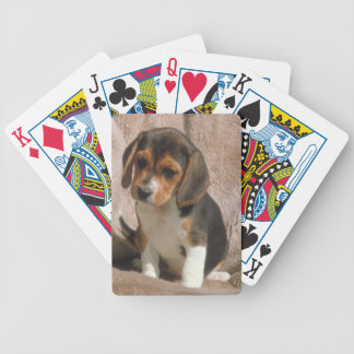 Beagle Puppy Dog Playing Cards