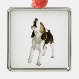 Beagle Puppy Dog Silver-Colored Square Decoration