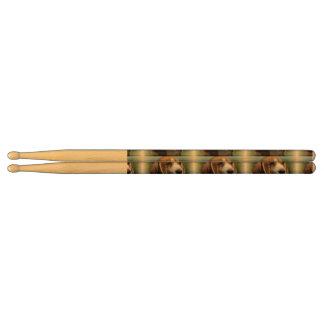 Beagle Puppy Drumsticks