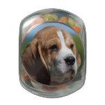 Beagle Puppy Jelly Belly Candy Jar