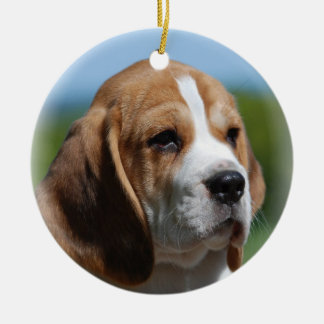 Beagle Puppy Ornament
