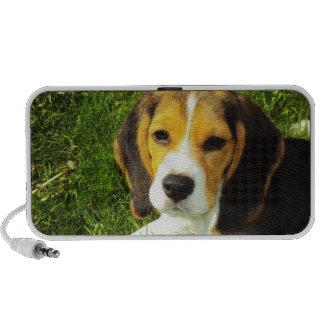 Beagle Puppy Speaker