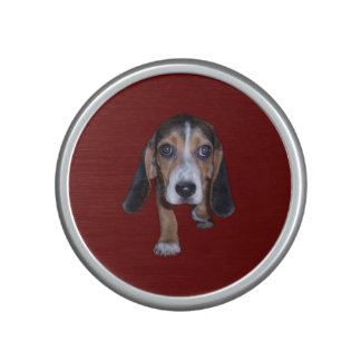 Beagle Puppy Walking - Red Background Color Speaker