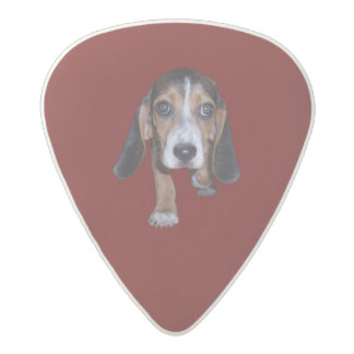 Beagle Puppy Walking - Red Background Color Acetal Guitar Pick