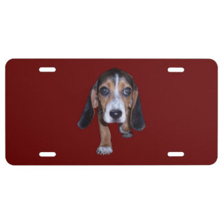 Beagle Puppy Walking - Red Background Color License Plate