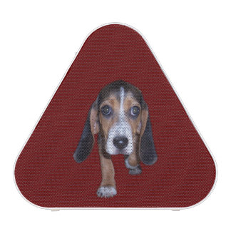 Beagle Puppy Walking - Red Background Color