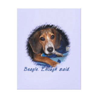 Beagle Puppy with Attitude - Blue Background Color Stretched Canvas Print