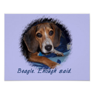 Beagle Puppy with Attitude - Blue Background Color Poster