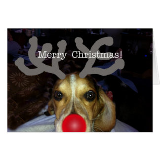 Beagle Reindeer Christmas Card