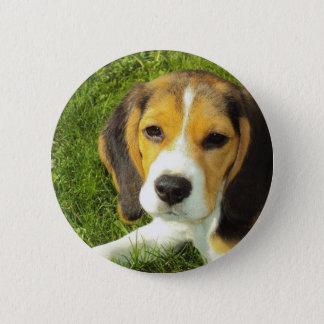 Beagle Round Button