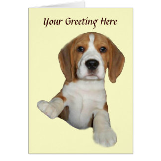 Beagle Too Cute Greeting Card