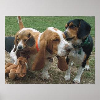 Beagles & Basset Hound Friends Poster