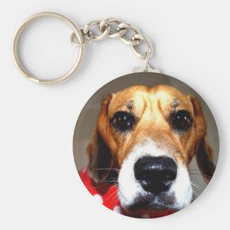 Beagles have more fun! key ring