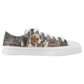 Beagles In The Woods Low Tops