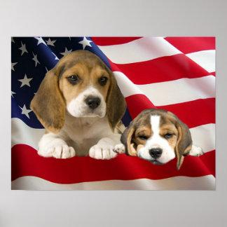 Beagles Print