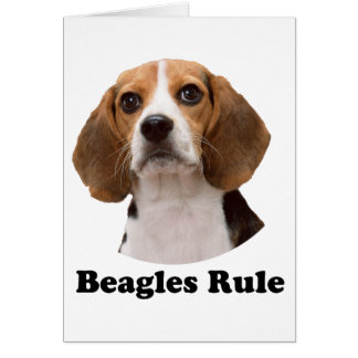 Beagles Rule Card