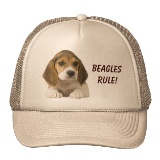 Beagles Rule Hat