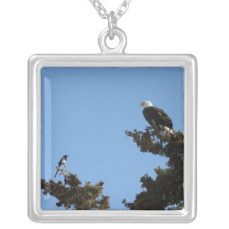 BEAMS Bald Eagle and Magpie Staredown Custom Jewelry