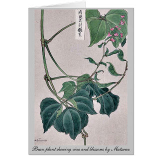 Bean plant showing vine and blossoms by Matsuwo Note Card