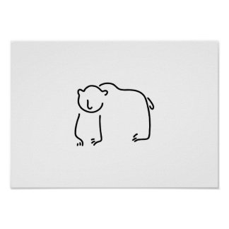 bear Alaska brown bear black bear
