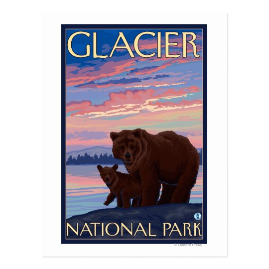 Bear and Cub - Glacier National Park, MT Postcard
