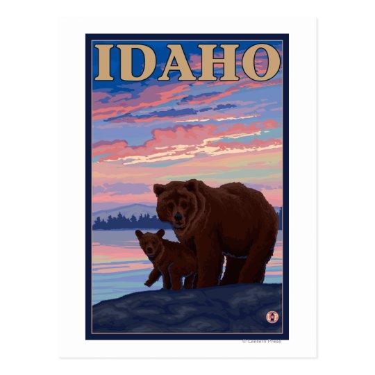 Bear and CubIdahoVintage Travel Poster Postcard