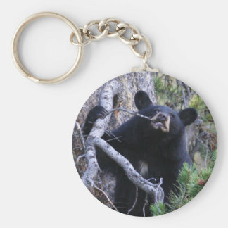 bear basic round button key ring